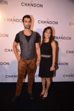 Ashmit Patel at Moet Hennesey launch of Chandon wines made now in India in Four Seasons, Mumbai on 19th Oct 2013