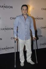 Gautam Singhania at Moet Hennesey launch of Chandon wines made now in India in Four Seasons, Mumbai on 19th Oct 2013