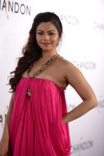 Konkana Bakshi at Moet Hennesey launch of Chandon wines made now in India in Four Seasons, Mumbai on 19th Oct 2013