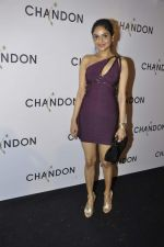 Madhoo Shah at Moet Hennesey launch of Chandon wines made now in India in Four Seasons, Mumbai on 19th Oct 2013