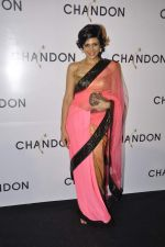 Mandira Bedi at Moet Hennesey launch of Chandon wines made now in India in Four Seasons, Mumbai on 19th Oct 2013