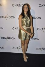 Nandita Mahtani at Moet Hennesey launch of Chandon wines made now in India in Four Seasons, Mumbai on 19th Oct 2013