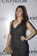 Nauheed Cyrusi at Moet Hennesey launch of Chandon wines made now in India in Four Seasons, Mumbai on 19th Oct 2013