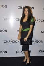 Neha Dhupia at Moet Hennesey launch of Chandon wines made now in India in Four Seasons, Mumbai on 19th Oct 2013