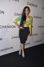 Nishka Lulla at Moet Hennesey launch of Chandon wines made now in India in Four Seasons, Mumbai on 19th Oct 2013