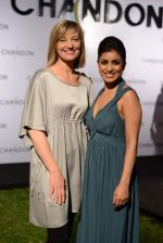 Pallavi Sharda at Moet Hennesey launch of Chandon wines made now in India in Four Seasons, Mumbai on 19th Oct 2013