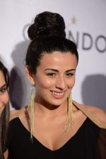 Pia Trivedi at Moet Hennesey launch of Chandon wines made now in India in Four Seasons, Mumbai on 19th Oct 2013
