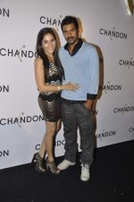 Shabbir Ahluwalia at Moet Hennesey launch of Chandon wines made now in India in Four Seasons, Mumbai on 19th Oct 2013