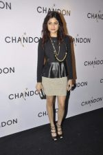 Shamita Shetty at Moet Hennesey launch of Chandon wines made now in India in Four Seasons, Mumbai on 19th Oct 2013