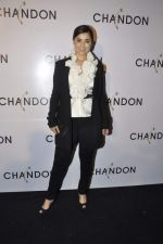 Simone Singh at Moet Hennesey launch of Chandon wines made now in India in Four Seasons, Mumbai on 19th Oct 2013