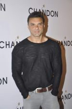 Sohail Khan at Moet Hennesey launch of Chandon wines made now in India in Four Seasons, Mumbai on 19th Oct 2013(388)_5263ee5aeae5d.JPG