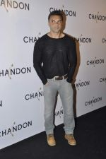 Sohail Khan at Moet Hennesey launch of Chandon wines made now in India in Four Seasons, Mumbai on 19th Oct 2013(391)_5263ee3a9cd06.JPG