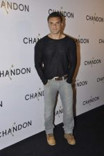 Sohail Khan at Moet Hennesey launch of Chandon wines made now in India in Four Seasons, Mumbai on 19th Oct 2013(393)_5263ee3e10fb2.JPG