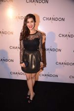 Sophie Chaudhary at Moet Hennesey launch of Chandon wines made now in India in Four Seasons, Mumbai on 19th Oct 2013