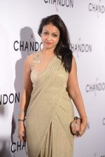 Surily Goel at Moet Hennesey launch of Chandon wines made now in India in Four Seasons, Mumbai on 19th Oct 2013