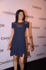 Sushmita Sen at Moet Hennesey launch of Chandon wines made now in India in Four Seasons, Mumbai on 19th Oct 2013
