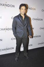 Tusshar Kapoor at Moet Hennesey launch of Chandon wines made now in India in Four Seasons, Mumbai on 19th Oct 2013