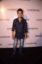 Vikram Phadnis at Moet Hennesey launch of Chandon wines made now in India in Four Seasons, Mumbai on 19th Oct 2013