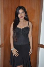 at Mickey Virus interview in Raheja Classique, Mumbai on 19th Oct 2013 (93)_5263db62075ea.JPG
