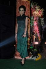 at Society Awards in Worli, Mumbai on 19th Oct 2013 (18)_5263f663a101b.JPG