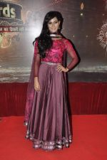 Mukti Mohan at ITA Awards in Mumbai on 23rd Oct 2013 (147)_52691e54ecf96.JPG