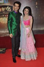 Ragini Khanna at ITA Awards in Mumbai on 23rd Oct 2013 (100)_52691e5a4335e.JPG