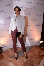 Sameera Reddy at Vileroy & Boch festive colletion launch in Mumbai on 22nd Oct 2013 (35)_5268c2f70dc5c.JPG