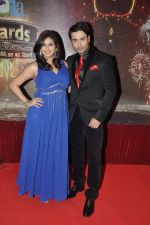 vivian dsena at ITA Awards in Mumbai on 23rd Oct 2013 (139)_52691efeea21a.JPG