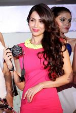 Malaika Arora Khan at Taiwan Excellence -13 campaign in Hotel Taj Palace, Delhi on 24th Oct 2013 (12)_526a0869c1e0b.JPG