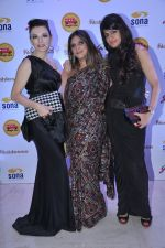 at NGO Magic bus auction event in Mumbai on 25th Oct 2013 (12)_526bd425eada7.JPG