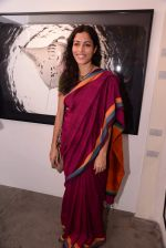 sheetal menon at Gallery 7 for Sumer Verma exhibition in Mumbai on 26th Oct 2013 (2)_526ce8605122f.JPG