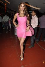 Nicole Faria  at Yaariyan film launch in Cinemax, Mumbai on 31st Oct 2013 (123)_5273ed1ad8eb9.JPG