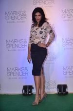 Archana Vijaya at Marks N Spencer fashion show in Mumbai on 11th Nov 2013 (88)_5281caa6548df.JPG