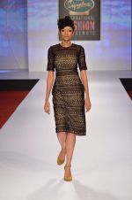 at Drashta Show on day 2 of Signature International fashion week in Mehboob, Mumbai on 16th Nov 2013 (91)_5288ff6001d3c.JPG