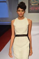 at Drashta Show on day 2 of Signature International fashion week in Mehboob, Mumbai on 16th Nov 2013 (94)_5288ff611ad41.JPG
