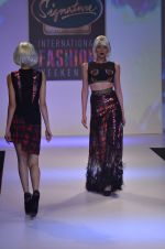 Model walks for Shane Falguni at Signature International fashion week 2013 on 17th Nov 2013 (17)_5289a4c6b6909.JPG