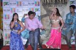 Simran Khan at Singh Saheb the great promotional event in R City Mall, Mumbai on 19th Nov 2013 (24)_528c6b9b7f0d9.JPG