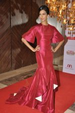Poorna Jagannathan at Hello hall of  fame awards 2013 in Palladium Hotel, Mumbai on 24th Nov 2013 (122)_529349384f8b2.JPG