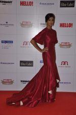 Poorna Jagannathan at Hello hall of  fame awards 2013 in Palladium Hotel, Mumbai on 24th Nov 2013 (123)_52934937cba81.JPG