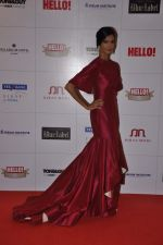 Poorna Jagannathan at Hello hall of  fame awards 2013 in Palladium Hotel, Mumbai on 24th Nov 2013 (124)_529349374e415.JPG