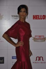 Poorna Jagannathan at Hello hall of  fame awards 2013 in Palladium Hotel, Mumbai on 24th Nov 2013 (125)_52934936c82db.JPG