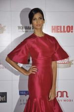Poorna Jagannathan at Hello hall of  fame awards 2013 in Palladium Hotel, Mumbai on 24th Nov 2013 (126)_5293493624d47.JPG