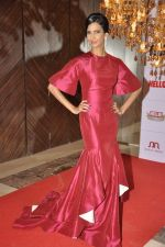 Poorna Jagannathan at Hello hall of  fame awards 2013 in Palladium Hotel, Mumbai on 24th Nov 2013 (130)_52934934037cb.JPG