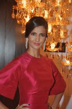 Poorna Jagannathan at Hello hall of  fame awards 2013 in Palladium Hotel, Mumbai on 24th Nov 2013(346)_5293493d22c9f.JPG