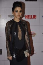 Sheetal Mafatlal at Hello hall of  fame awards 2013 in Palladium Hotel, Mumbai on 24th Nov 2013 (71)_529339d0b158c.JPG