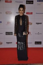 Sheetal Mafatlal at Hello hall of  fame awards 2013 in Palladium Hotel, Mumbai on 24th Nov 2013 (72)_529339d033b7f.JPG
