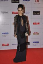 Sheetal Mafatlal at Hello hall of  fame awards 2013 in Palladium Hotel, Mumbai on 24th Nov 2013 (76)_529339ce2c5d0.JPG