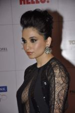 Sheetal Mafatlal at Hello hall of  fame awards 2013 in Palladium Hotel, Mumbai on 24th Nov 2013 (77)_529339cd9ec9c.JPG