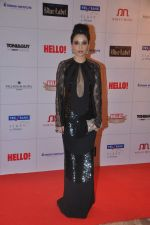 Sheetal Mafatlal at Hello hall of  fame awards 2013 in Palladium Hotel, Mumbai on 24th Nov 2013(317)_529339cd24f6d.JPG
