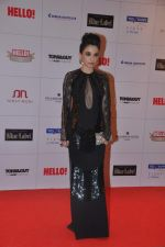 Sheetal Mafatlal at Hello hall of  fame awards 2013 in Palladium Hotel, Mumbai on 24th Nov 2013(322)_529339ca44bd5.JPG